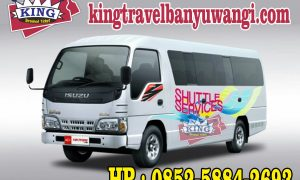travel surabaya banyuwangi malang denpasar PP
